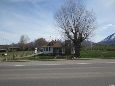 Spanish Fork Single Family Home For Sale: 1225 S Main E