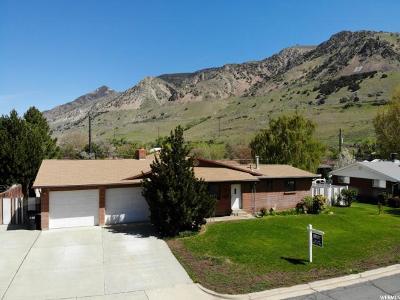 Brigham City Single Family Home For Sale: 1049 E Beecher N