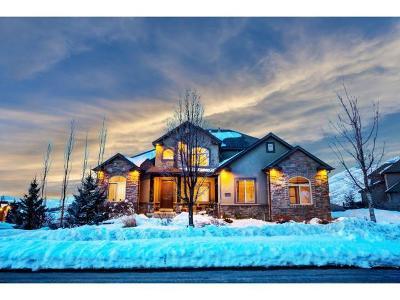 Draper Single Family Home For Sale: 14668 S Woods Point Cv E