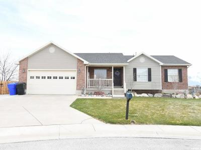 Tremonton Single Family Home For Sale: 830 W 720 N