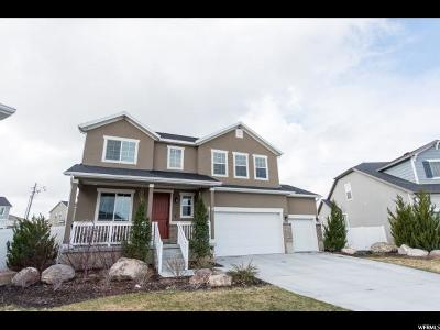 Tooele County Single Family Home For Sale: 6497 N Valley Point Way W