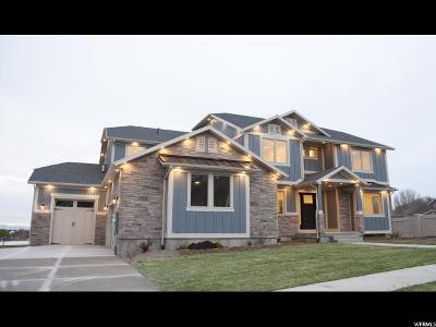 Payson Single Family Home For Sale: 936 W Temple Rim Ln S