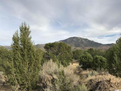 Delta, Fillmore Residential Lots & Land For Sale: 1700 E Pioneer