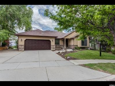 Sandy Single Family Home For Sale: 9898 Falconview Dr S