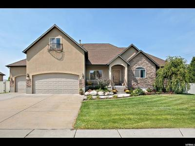 American Fork Single Family Home For Sale: 226 S 650 W