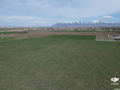 Tooele County Residential Lots & Land For Sale: 265 N Cooley