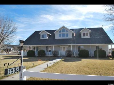 St. George Single Family Home For Sale: 1538 W 8050 N