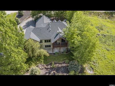 Park City Single Family Home For Sale: 3527 Daybreaker Dr