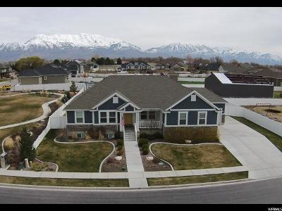 Lehi Single Family Home For Sale: 1355 S 2185 W