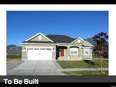 Spanish Fork Single Family Home For Sale: 2725 E 80 S