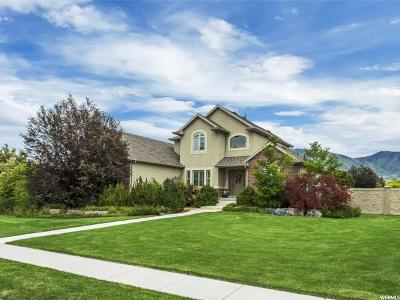Tooele County Single Family Home For Sale: 5548 N Derby Ln W