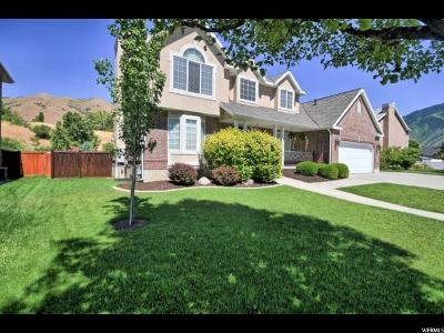 Springville Single Family Home For Sale: 1813 E Cranberry Way S