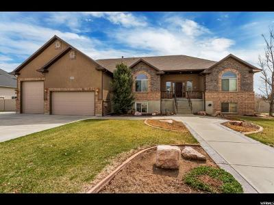 Weber County Single Family Home For Sale: 5037 W 4175 S