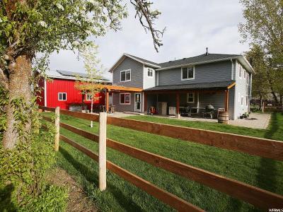 Weber County Single Family Home For Sale: 1591 E 6600 S