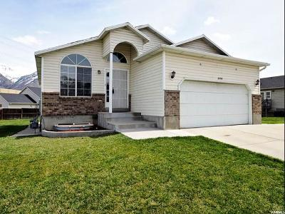 Provo, Orem Single Family Home For Sale: 1055 S 770 W