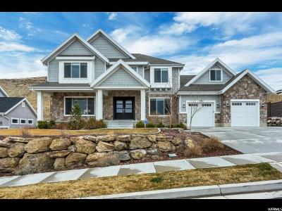 Lehi Single Family Home For Sale: 1836 W Driftwood View Dr