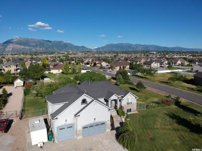 Weber County Single Family Home For Sale: 3696 S 3750 W