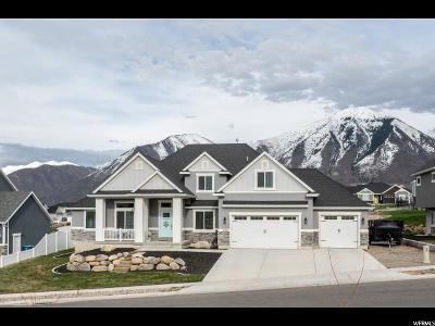 Elk Ridge Single Family Home Under Contract: 1156 N Christley Ln E #44