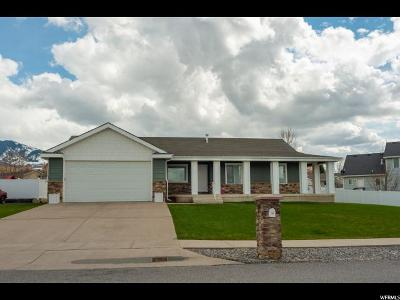 Single Family Home For Sale: 365 S 100 W