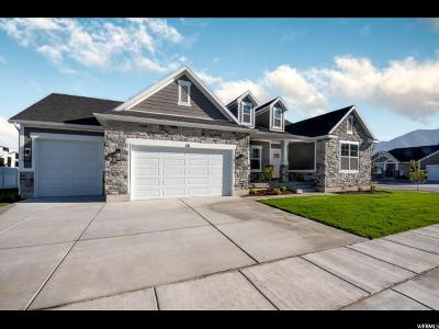 Tooele County Single Family Home For Sale: 28 W Danbury Ln N