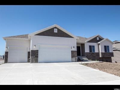 Hyrum Single Family Home For Sale: 464 S 400 E