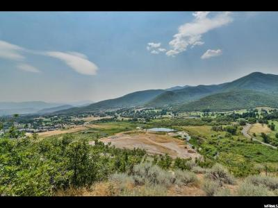 Wasatch County Residential Lots & Land For Sale: 412 W Luzern Rd