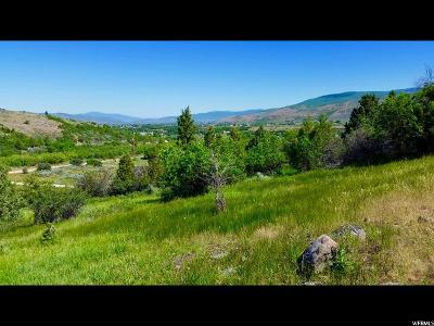 Wasatch County Residential Lots & Land For Sale: 114 Woodland View Dr