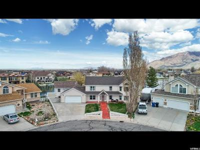 Tooele County Single Family Home For Sale: 116 Lakeview Dr