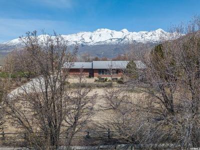 Alpine Single Family Home Under Contract: 913 E Village Way