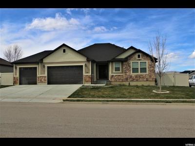Salem Single Family Home For Sale: 253 N 780 E