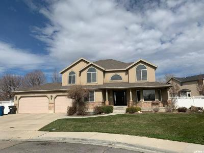 American Fork Single Family Home For Sale: 61 E 1300 N