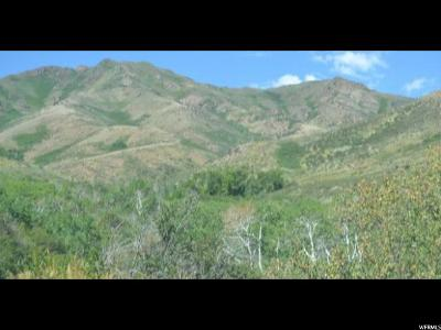 Tooele County Residential Lots & Land For Sale: 1 S Harker Canyon/Sunday Mine Rd W
