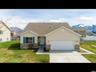 Logan Single Family Home For Sale: 772 S 1470 W