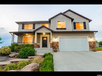 Hyde Park Single Family Home For Sale: 341 E 260 N