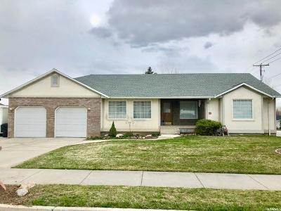 Single Family Home For Sale: 313 S 455 E