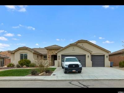 St. George Single Family Home For Sale: 257 E Munich Dr