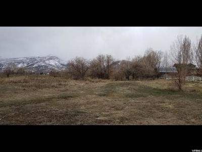 Wasatch County Residential Lots & Land For Sale: 565 N 500 E