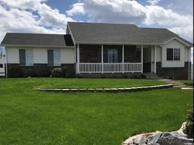 Santaquin Single Family Home For Sale: 462 S 500 E