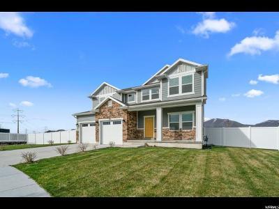 Spanish Fork Single Family Home For Sale: 918 N Plainsman Dr