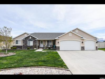 Tooele County Single Family Home For Sale: 1109 Kimberly Way