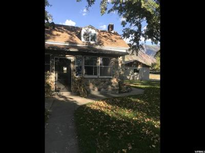 Alpine Single Family Home For Sale: 38 N 200 E