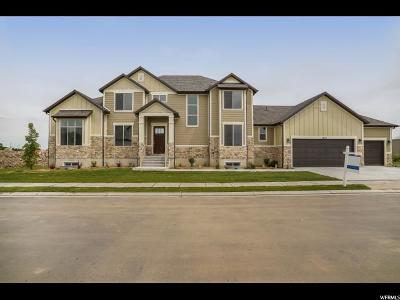 Weber County Single Family Home For Sale: 2656 W 3125 S #2