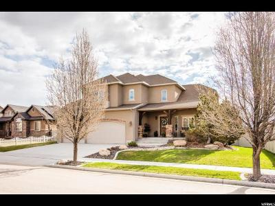 Riverton Single Family Home For Sale: 13561 S Wild Brook Dr
