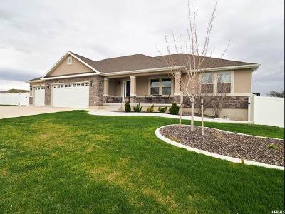 South Jordan Single Family Home Backup: 678 W Cory Rd S
