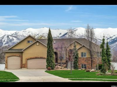Kaysville Single Family Home Under Contract: 711 S Rildah Cir W
