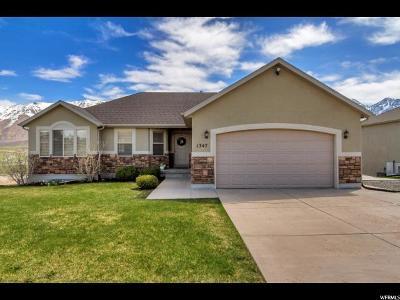 Santaquin Single Family Home For Sale: 1347 S Cedar Pass Dr
