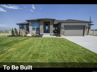 Weber County Single Family Home For Sale: 3634 S Green Farm Way W #24