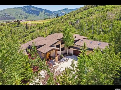Park City Single Family Home For Sale: 4700 Nelson Ct