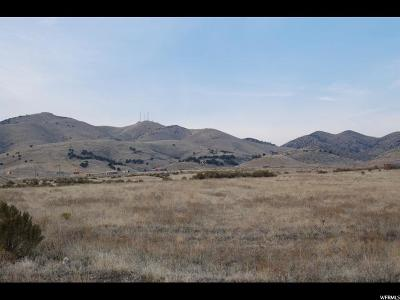 Tooele County Residential Lots & Land For Sale: 1000 S Silver Ave W