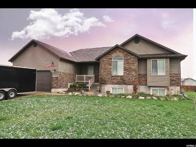 Nibley Single Family Home For Sale: 2687 S 0850 W
